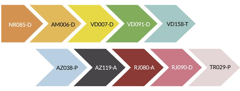 Paleta tendencias de color pintuco 2020 diversión cromática