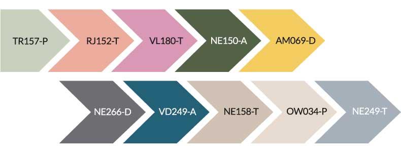 Tendencias de color Pintuco 2020 Vida colectiva